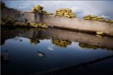 Proponiamo qui una galleria di foto scattate dal fotogiornalista italiano Alessio Romenzi in esclusiva per il settimanale statunitense Time a Qseir (Qsayr), cittadina siriana di circa 40mila abitanti che dista […]