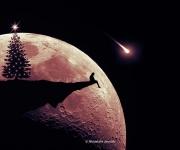 Desiderio, di Mustafa Yaaqub