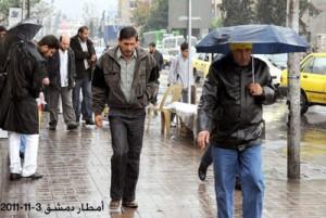 L'immagine della Sana che apriva il notiziario il 3 novembre 2011