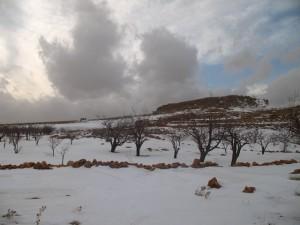 L'altipiano di Arsal