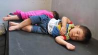 E' salita fino a un milione e mezzo la stima del numero di sfollati interni in Siria dall'inizio delle violenze. Lo ha detto il 24 luglio 2012 a Ginevra la […]