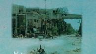 (di Lorenzo Trombetta). Nella totale indifferenza della comunità internazionale da otto mesi le forze del regime siriano assediano un quartiere di Damasco, dove per decenni sono stati ospitati rifugiati palestinesi […]
