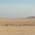 (di Estella Carpi, per SiriaLibano*). Lo scorso gennaio mi dirigevo a 20 km a nord dalla città giordana di Zarqa, dove si trova il mukhayyam – campo profughi – di […]