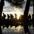 (di Amr Salahi, per Middle East Monitor.Traduzione dall'inglese di Claudia Avolio). La scorsa settimana foto e video di rifugiati siriani disperati che giungono in Europa – o muoiono nel tentativo […]