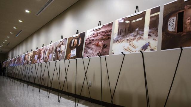 """Alcune delle foto """"Caesar"""" esposte al pubblico (Internet)"""